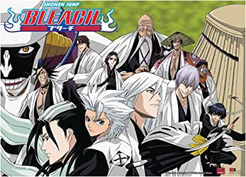 Great Eastern Entertainment Bleach 13 Group Captains Wall Scroll 33 By 44 Inch
