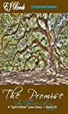 """The Promise and Forbidden Loves (A """"SPIRIT"""" MATE SERIES Book 15)"""