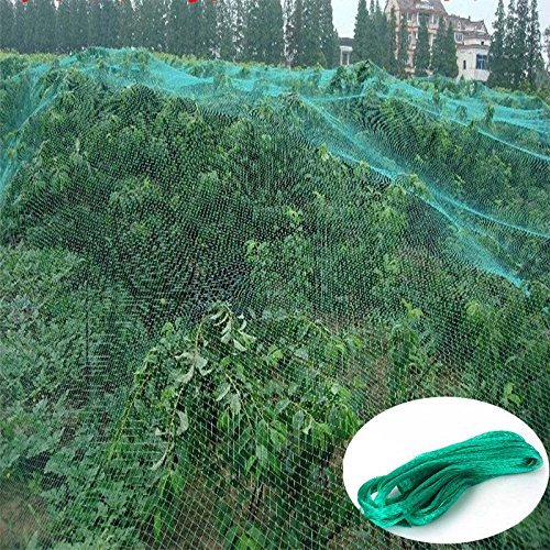 Green Anti Bird Protection Net Mesh Garden Plant Netting Protect Plants and Fruit Trees from Rodents Birds Deer Best for Seedlings,Vegetables,Flowers, Fruits,Bushes,Reusable Fencing (13.2Wx33L(Ft))