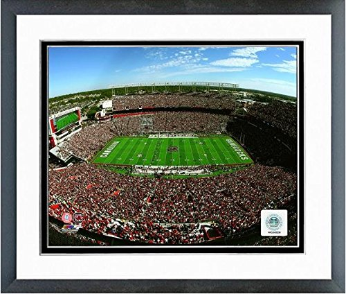 (Williams-Brice Stadium South Carolina Gamecocks Action Photo (Size: 12.5