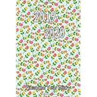 2019-2020 Financial Year Diary: Ideal for Keeping Expenses - Monthly Income & Expenditure Sheets - Yearly Totals Page - Planners for Both Years - Handy Size Diary - Week to Two Pages