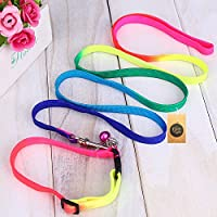The Pets Company Nylon Rainbow Colorful Dog Leash and Collar Set, Suitable for All Small & Medium Dog Breeds