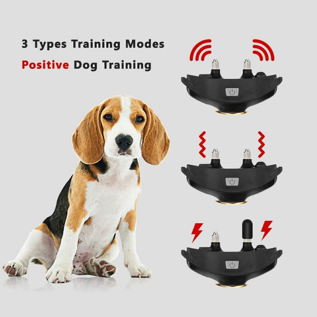 Peteme Dog Training Shock Collar Rechargeable with Beep//Vibra//Electric Shock,100/% Waterproof 1200 ft Remote Trainer Range Collar for Small Medium Large Dogs.