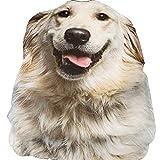 3D Animal Prints Blanket Bedding Dog Shaped Summer Quilt Golden Retriever Comforter Washable Light Quilt