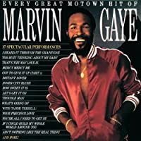 Every Great Motown Hit of Marvin Gaye [Importado]