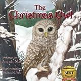 The Christmas Owl