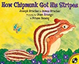 How Chipmunk Got His Stripes (Picture Puffins)