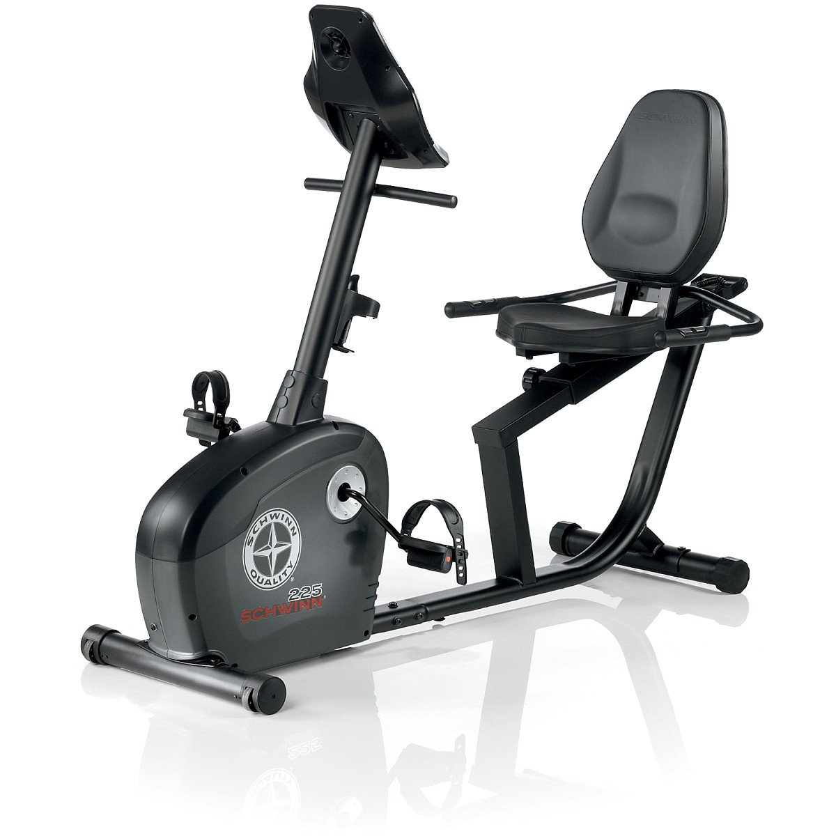 Schwinn 225 Recumbent Bike Exercise Bikes Sports