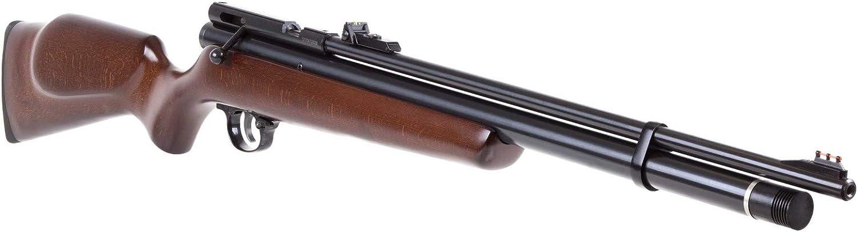 Best air rifle 200 beeman