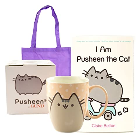 I Am Pusheen The Cat Book And Mug Gift Combo | I Am Pusheen The Cat