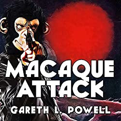Macaque Attack