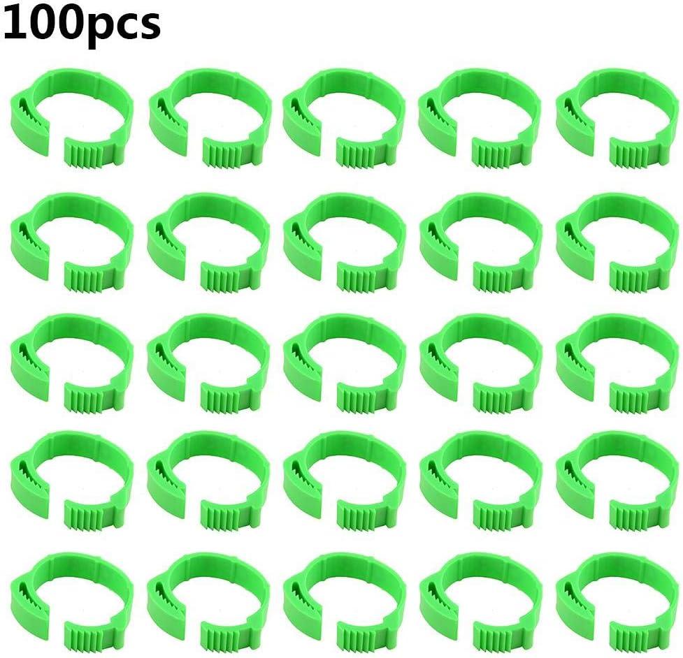 biteatey 100PCS Mascota Anillos de Pierna de Pierna de Pollo Tamaño Ajustable Hebilla de Pata de Ave Etiqueta Digital Hebilla de Anillo para Pollo Pato Paloma Distinción de la avicultura