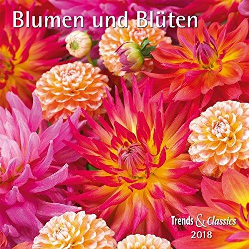 Blumen und Blüten Flowers and Blossoms 2018 - Broschürenkalender - Wandkalender - mit herausnehmbarem Poster - Format 30 x 30 cm