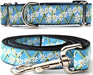 "product image for Diva-Dog 'Daisy' 1"" Wide Chainless Martingale Dog Collar, Matching Leash Available"