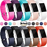 (US) For Fitbit Charge 2 Bands, Charge2 Replacement Accessories, Pack of Ten, Large
