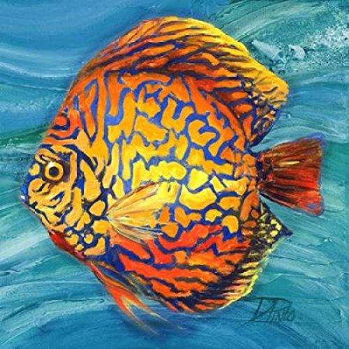 Vibrant Sea Life IV Poster Print by Patricia Pinto (24 x 24)