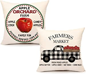 4TH Emotion Apple Farmhouse Throw Pillow Cover Fall Christmas Decorations Cushion Case for Sofa Couch 18 x 18 Inches Cotton Linen Set of 2
