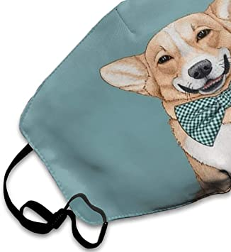 Comfortable Adjustable Corgi Gentlemanly Dog With Cute Bow Tie Facial Decorations For Women And Men