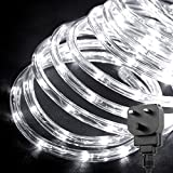 LE Outdoor LED Rope Lights Kit, 10m 240 LEDs Waterproof Strip Lights, 24V, Halloween Decorative Lighting for Garden Fence Patio Home, Daylight Whit