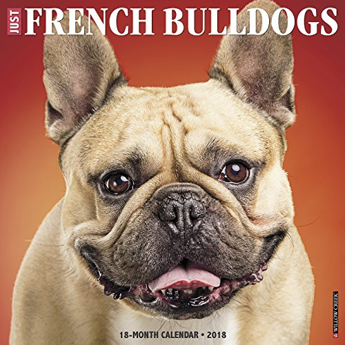 Just French Bulldogs 2018 Calendar