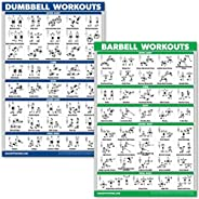 (46cm x 70cm , LAMINATED) - QuickFit Dumbbell Workouts and Barbell Exercise Poster Set - Laminated 2 Chart Set