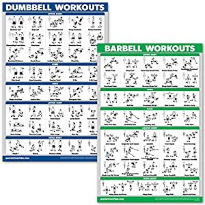 QuickFit Dumbbell Workouts and Barbell Exercise Poster Set – Laminated 2 Chart Set – Dumbbell Exercise Routine & Barbell Workouts