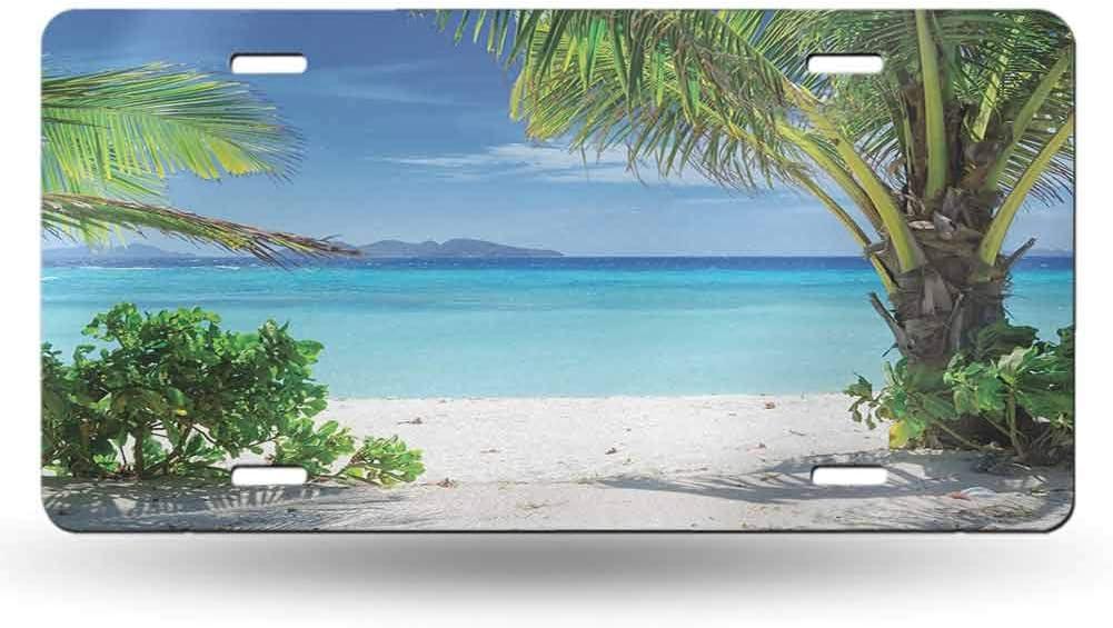 dsdsgog Novelty Tropical,Idyllic Tranquil Ocean Resort Beach Plants Seaside Decor for Summer House,Green Aqua Coconut 12x6 inches,Vanity Gift