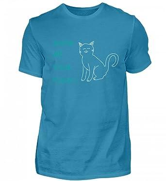 figagattoFammi gatto la gatti figa i Mostrami tuoi tua vedere l13KTFJc