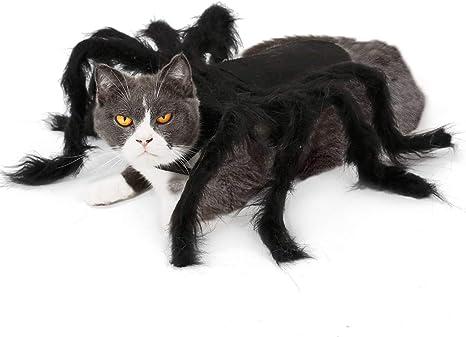 Disfraz de Oso BT, para Perro, Gato, Cosplay, Halloween, diseño de ...