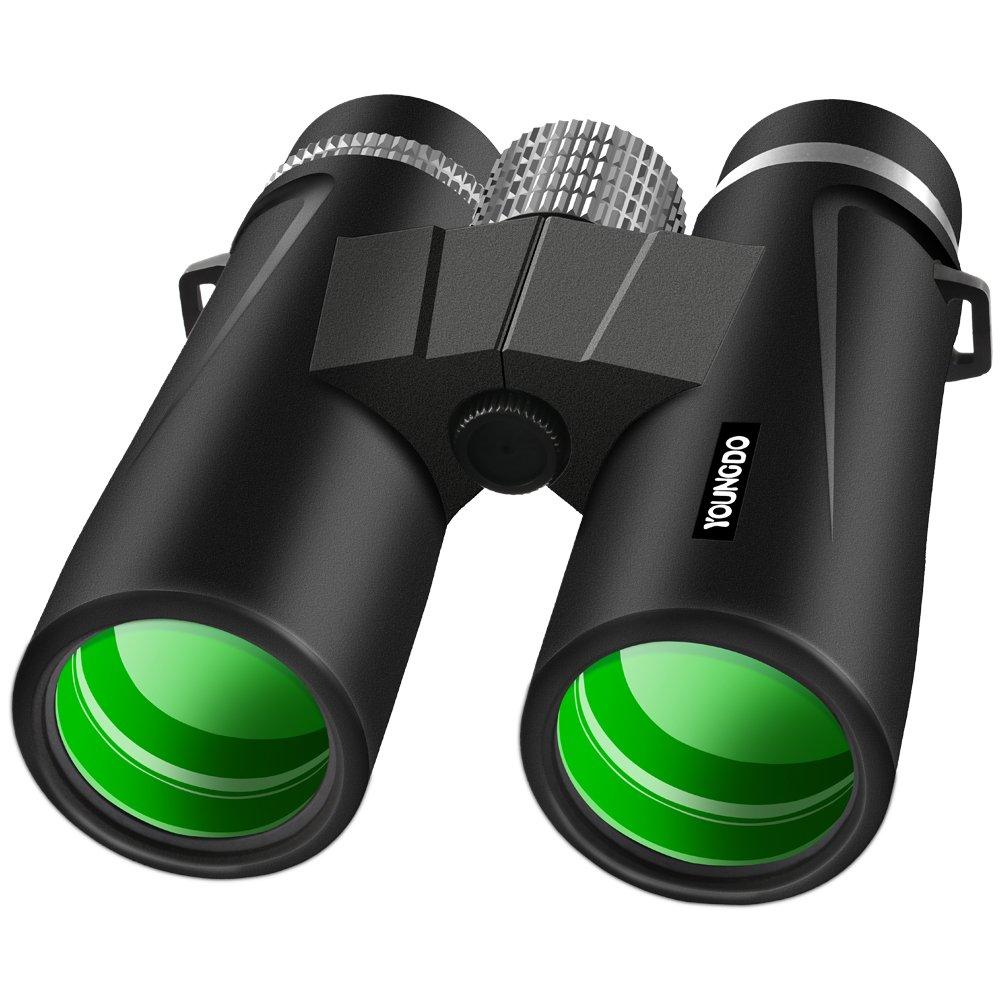 大人の双眼鏡10 x 42、ip68防水プロフェッショナル双眼鏡bak4プリズムFMCレンズNitrogen Filled Fogproof for Bird WatchingフローティングBoating Hunting Wildlifeスポーツイベントゲームコンサート B07DK5QDVK