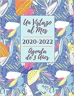 Agenda de 3 Años 2020-2022 Un Vistazo al Mes: Organizador de ...