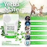 Kalmateh Yerba Mate Starter Set– Modern 8 oz
