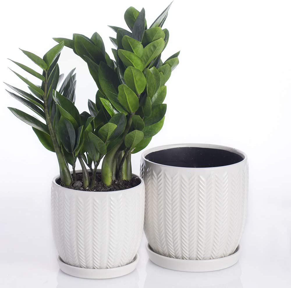 Voeveca Ceramic Flower Pot Garden Planters 6.5