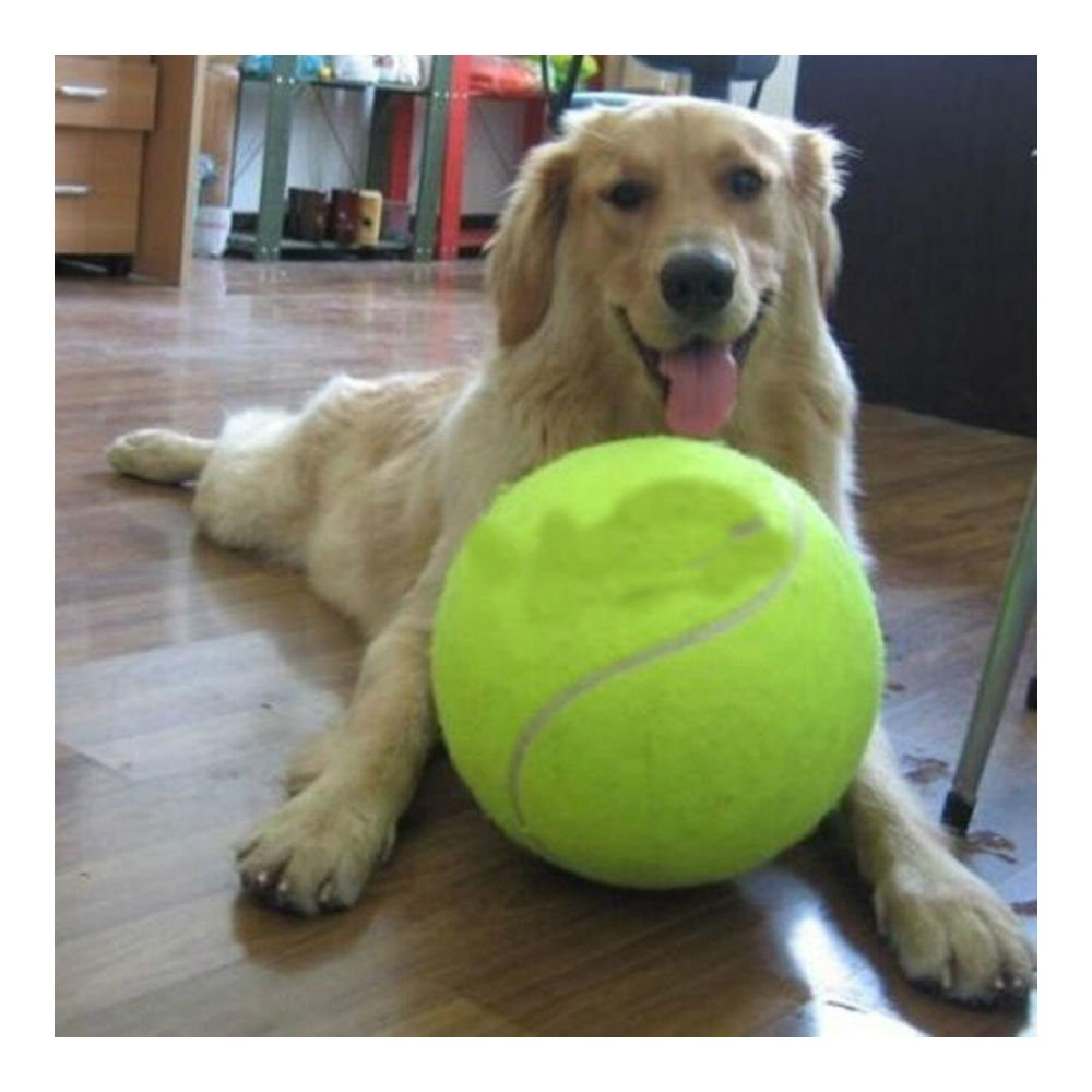 24CM Big Giant Pet Dog Puppy Tennis Ball Thrower Chucker Launcher Play Toy NEW