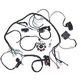 Amazoncom Complete Electrics Coil CDI Wiring Harness ATV KLX - Cdi wiring diagram atv