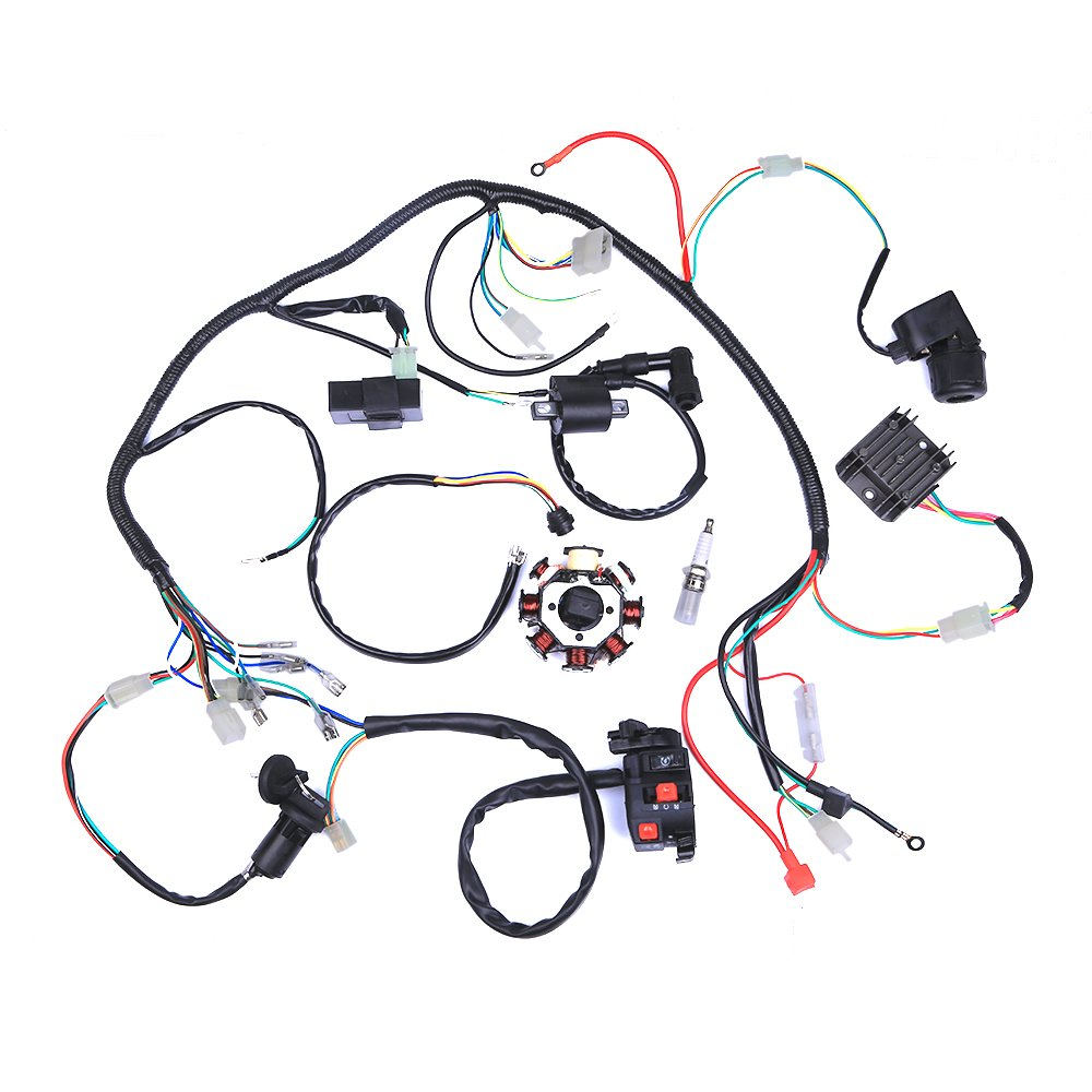 Amazon.com: Complete Electrics ATV Quad 200/ 250CC Wiring Harness CDI 3  Holes: Automotive