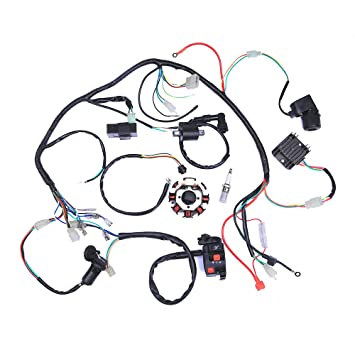 61AFYckDL2L._SY355_ amazon com complete electrics atv quad 200 250cc wiring harness 250cc wiring harness at aneh.co
