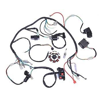 Amazon complete electrics atv quad 200 250cc wiring harness complete electrics atv quad 200 250cc wiring harness cdi 3 holes swarovskicordoba Images