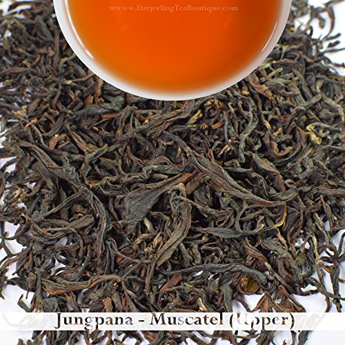 Bulk Wholesale Pack: 2017 Darjeeling Second Flush Tea - Jungpana | 500g (17.63oz) | Muscatel - Summer Tea as Breakfast Tea & Afternoon Tea | Darjeeling Tea Boutique by Darjeeling Tea Boutique