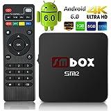 SMBOX SM2 Android 6.0 4K 1080P TV Box Amlogic S905X Quad-Core 1G+8G 2.4GHz WIFI HDMI