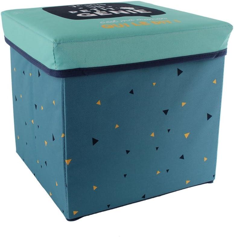 THE HOME DECO FACTORY puf de almacenaje Plegable, poliéster, 30 x 30 x 30 cm: Amazon.es: Hogar
