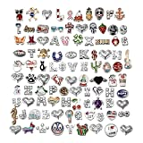 Floating Charms for Glass Living Memory Lockets Wholesale Gold and Silver Mix Lot 100 Designs (100Pcs, Model 2)