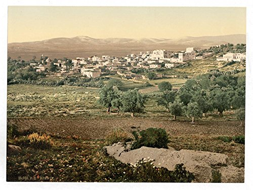 Historic Photos General view, Jenin, Holy Land, (i.e, West Bank) by Historic Photos