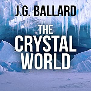 The Crystal World Audiobook
