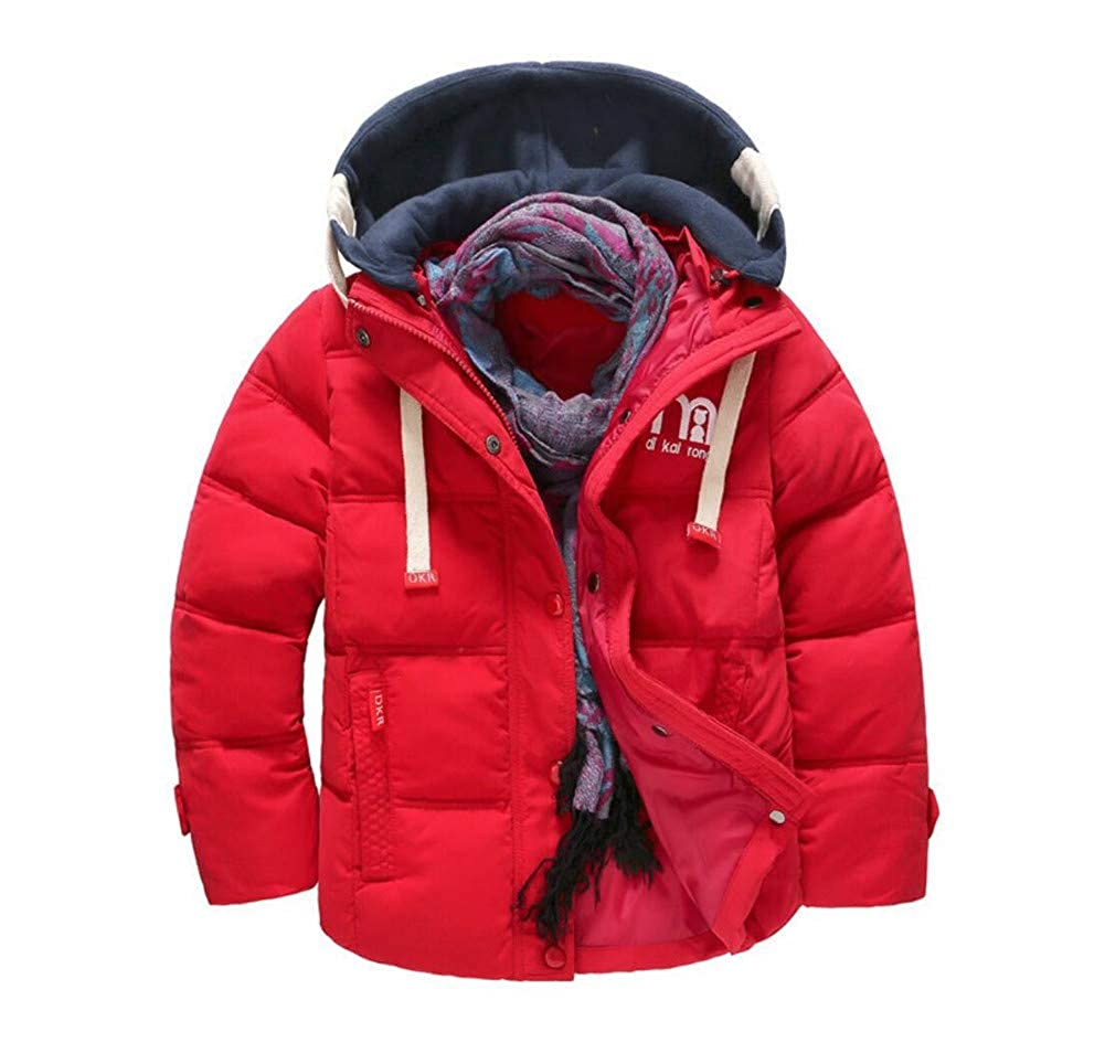 ZYZF Boys Kids Thick Warm Winter Windproof Hoodie Quilted Fleece Down Jacket 20180902139