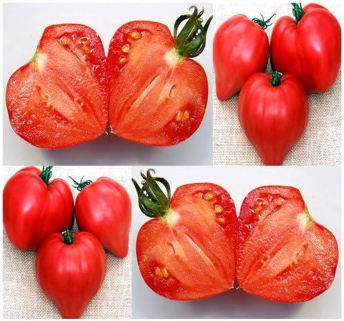 Amazon Com Pink Ox Heart Tomato Seeds Heirloom Tomato Fleshy