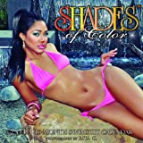 (12x12) Shades of Color Swimsuit - 16-Month 2013 Wall Calendar