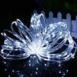 LED Solar Rope Lights,DINOWIN 50LED 23ft Waterproof Copper Wire Outdoor Tube String Lights for Christmas Wedding Party, Garden, Yard, Path, Fence, Stairs, Backyard, Patio Decorative Lighting--Warm White (White)