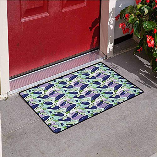 Gloria Johnson Eggplant Front Door mat Carpet Luscious Sliced Aubergines in a Multicolored Environmnet Tasty and Natural Life Machine Washable Door mat W15.7 x L23.6 Inch Multicolor