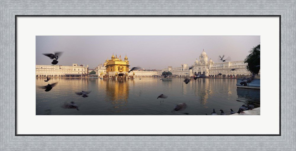 Reflection of a temple in a lake, Golden Temple, Amritsar, Punjab, India by Panoramic Images Framed Art Print Wall Picture, Flat Silver Frame, 35 x 17 inches